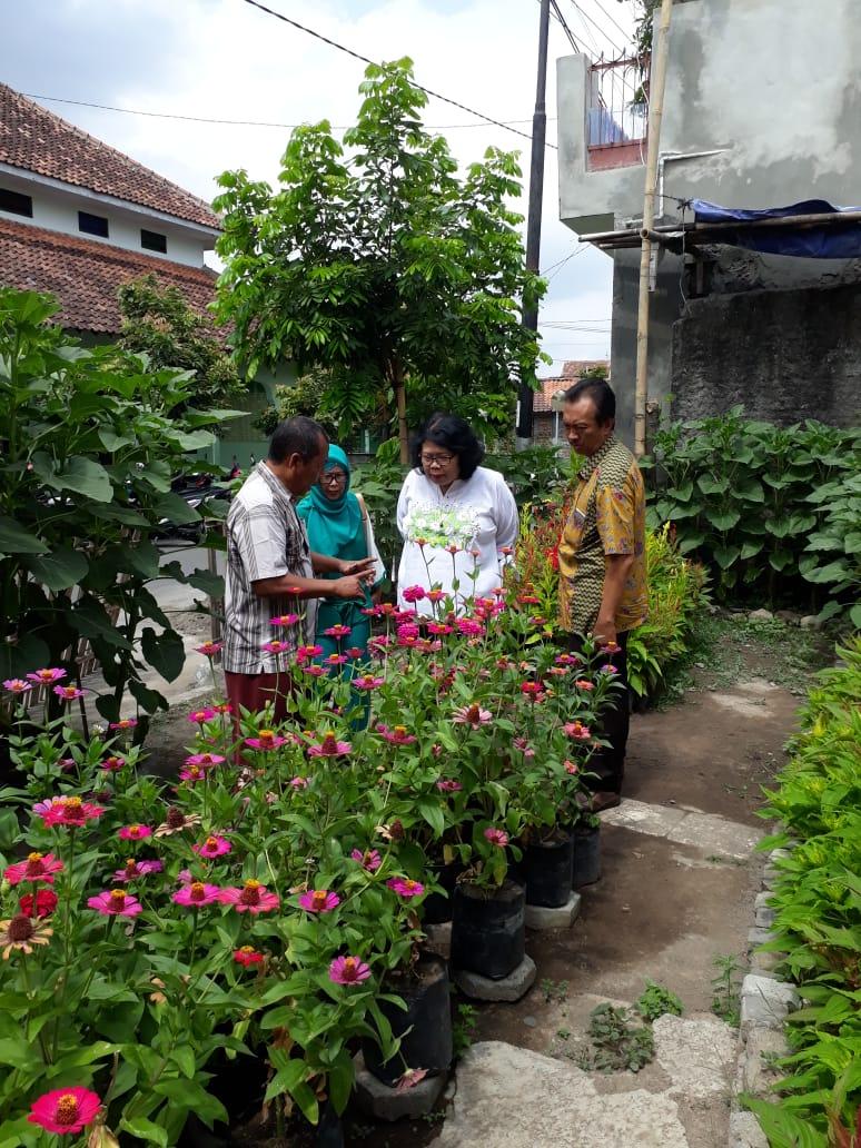 Budi Daya Bunga di Kelurahan Giwangan